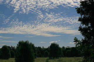 美麗的雲彩