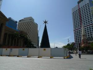 聖誕樹@King George Square