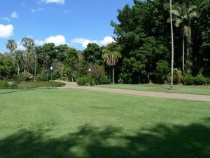 Brisbane City Botanic Garden