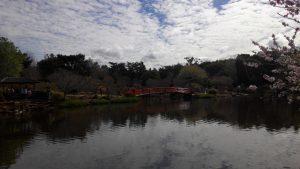 USQ日式花園